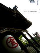 【讃岐うどん】こんぴら温泉郷で湯ったり旅【かずら橋】