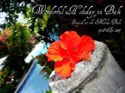 【5日あったら】バリ島で過ごす、アジアリゾート満喫の旅【バリ島行こう】